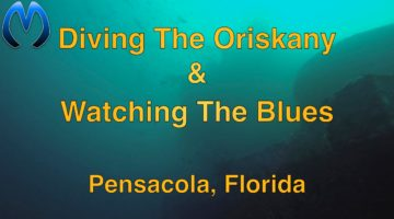 Diving the Oriskany & Watching The Blues